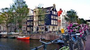 海外赴任でオランダへ